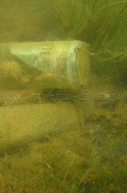 Bouteilles colonisées par des algues 3