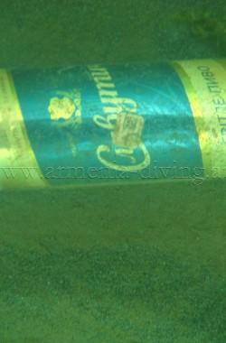 Canette de bière