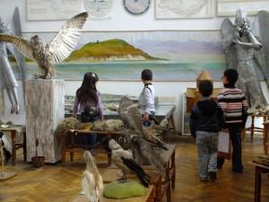 4_բնագիտական թանգարան